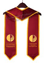 Master of Science In Occupational Therapy Graduation Stole